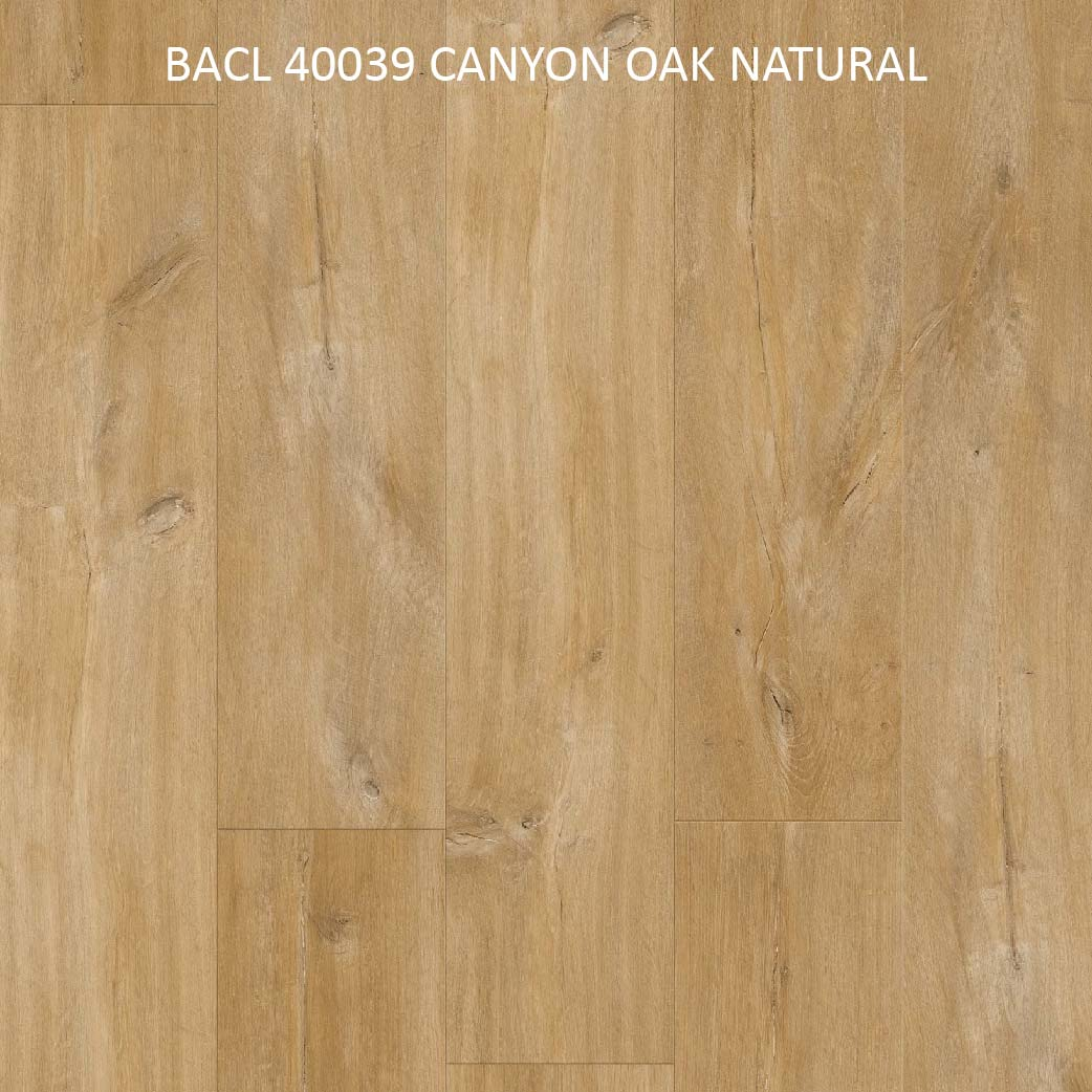 BACL40039 CANYON OAK NATURAL