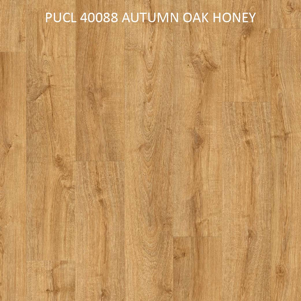 PUCL40088 AUTUMN OAK HONEY