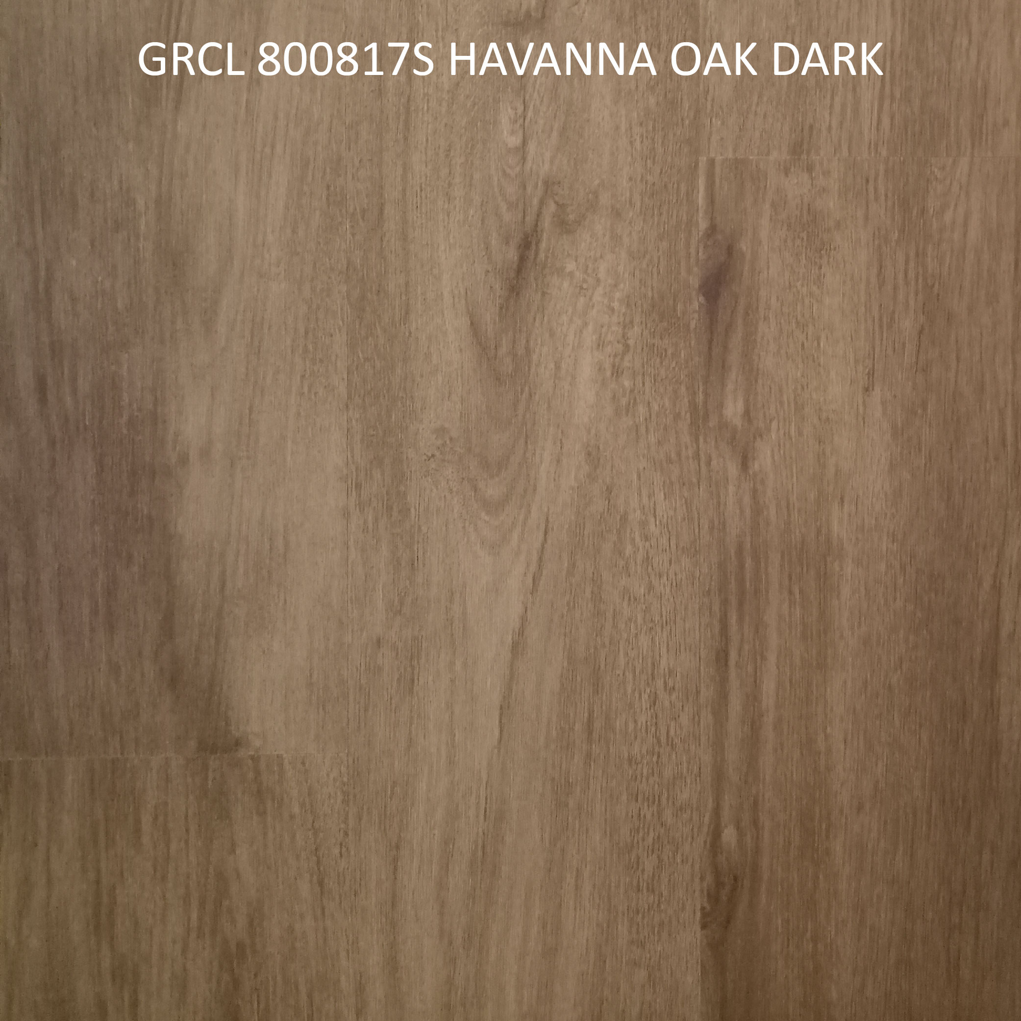 GRCL 800817S HAVANNA OAK DARK