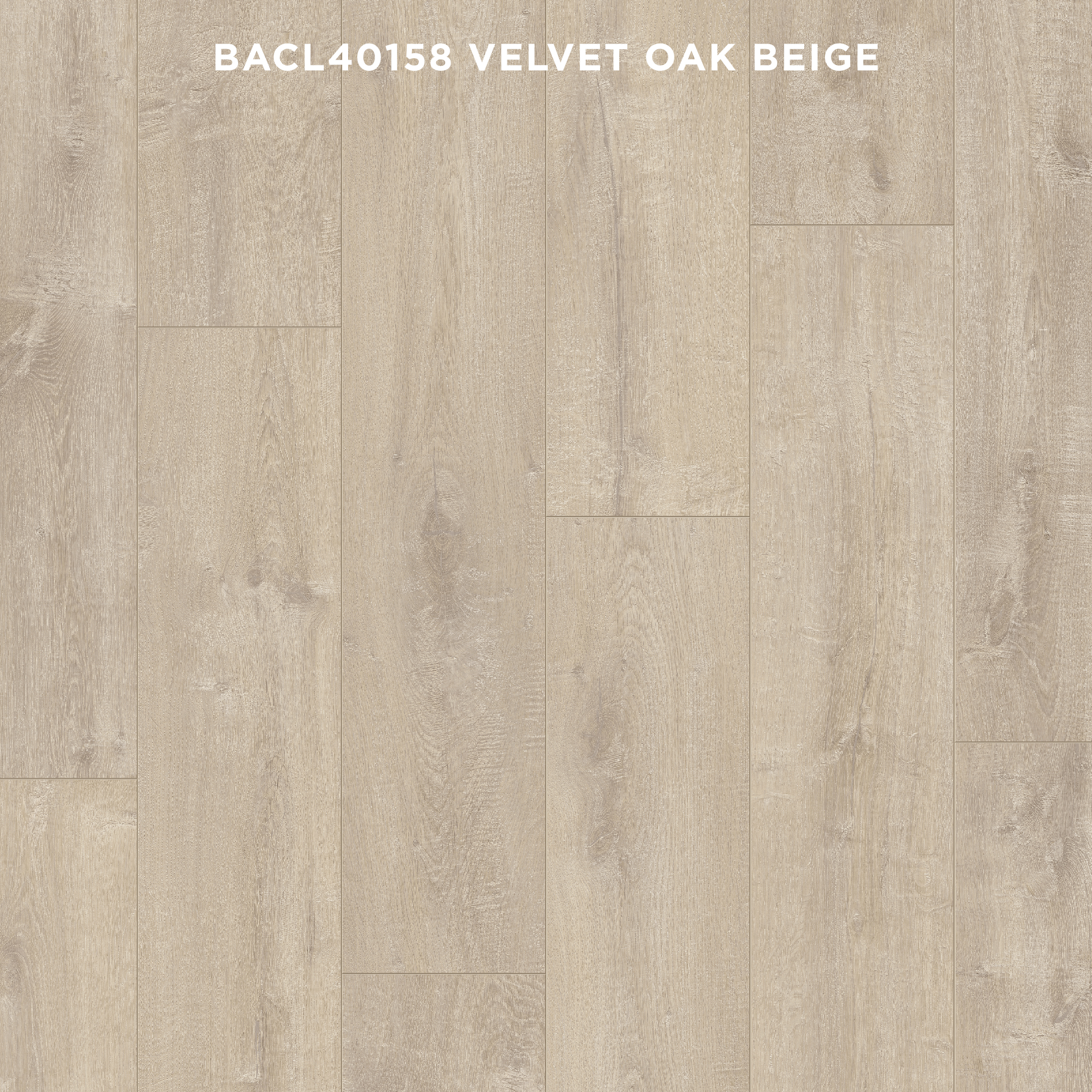 BACL40158 VELVET OAK BEIGE (New)